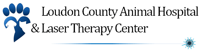 Loudon County Animal Hospital & Laser Therapy Center